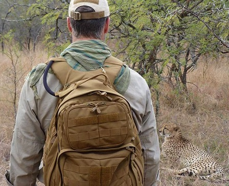 Joel-Lambert-Cheetah.jpg