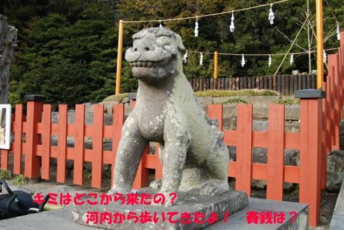 鶴岡八幡宮 008