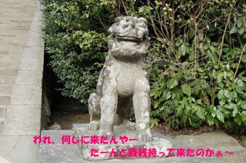 鶴岡八幡宮 007