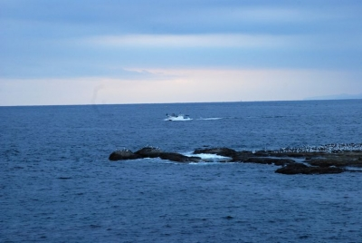 en.20150221 江ノ島 001