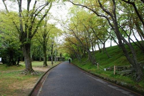 hi.姫路城 20150421 010