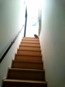 ムンチ階段