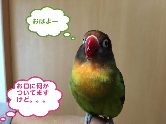 IMG_7125.jpg