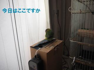 PC220019.jpg