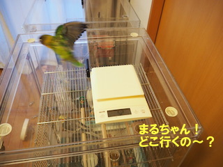 PC240027.jpg