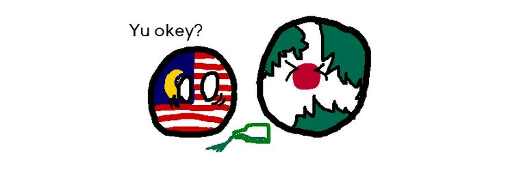 マレーシアが日本に毒を盛ったようです (6)
