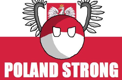 ポーランドの進化 (14)