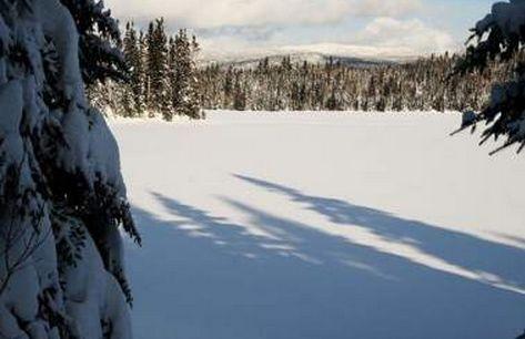 フィンランドは冬になってない (15)