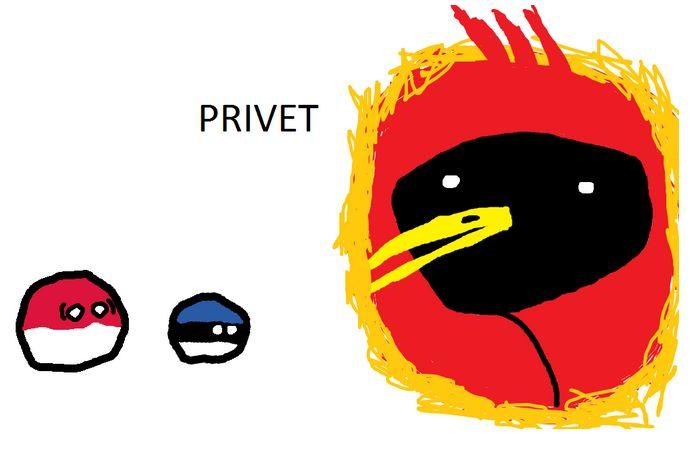 エストニアのスーパーパワー (11)