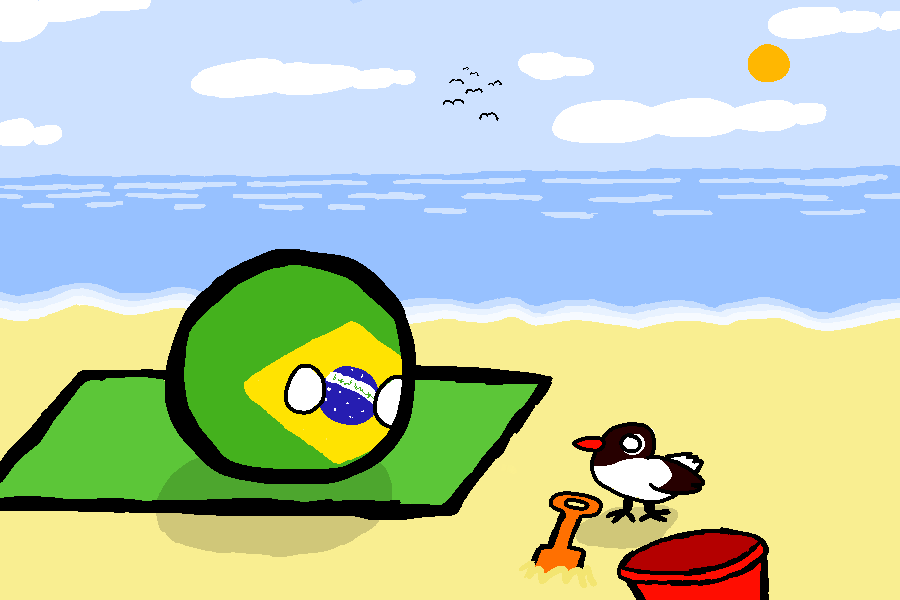 日本がブラジルに行くよ (1)