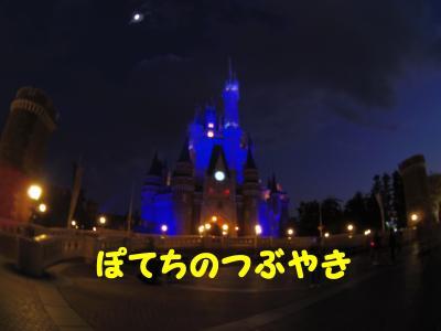 20141231 ワンス