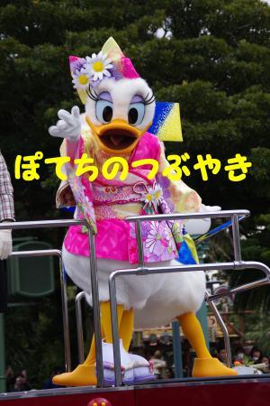 20150102 デイジー