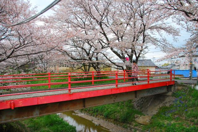 赤い橋を渡る