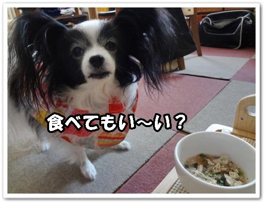 食べてい~い?