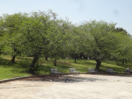噴水前のベンチ