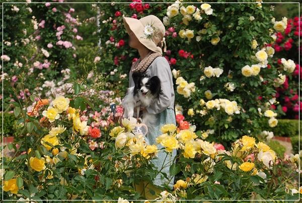 薔薇園にて2