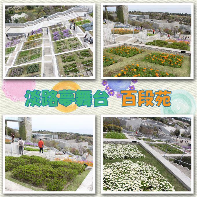 49-3_20150510173853036.jpg