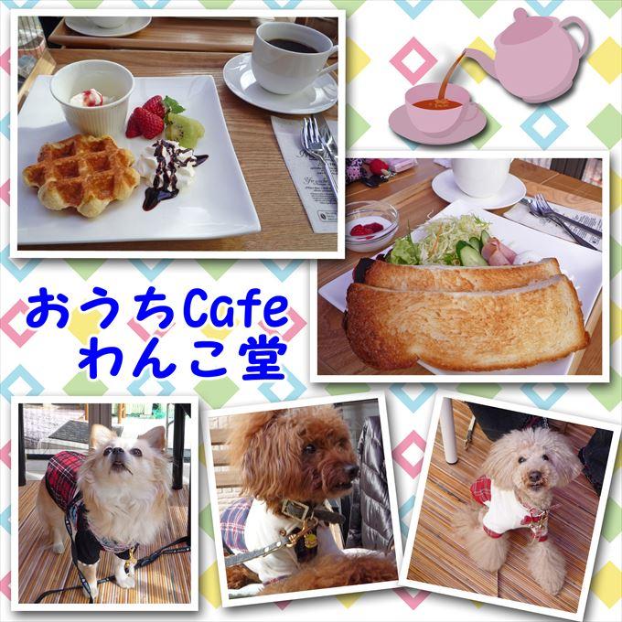 93_201503221809075d6.jpg