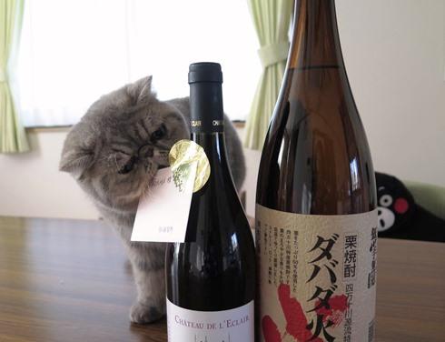 1)アキちゃん&平ちゃんママさんから