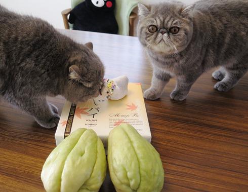 6)愛さんからのプレゼント♡