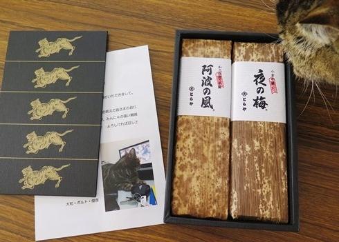 10)トラちゃんのお菓子でつかー