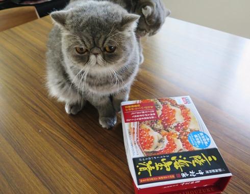 6)美里さんから三陸名産!