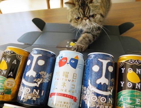 24)ええビールでつねー