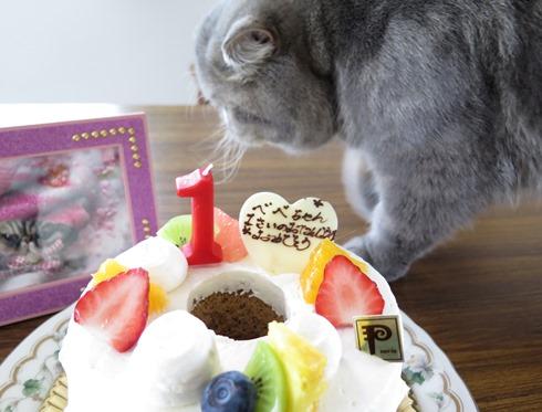 12)べべたんバースデーケーキ
