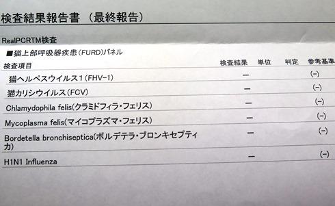8)ウィルス検査結果 - コピー