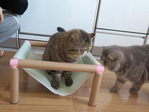 3)はぢゅね~!!だめれつ