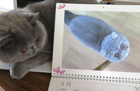 14)またボクじゃない!