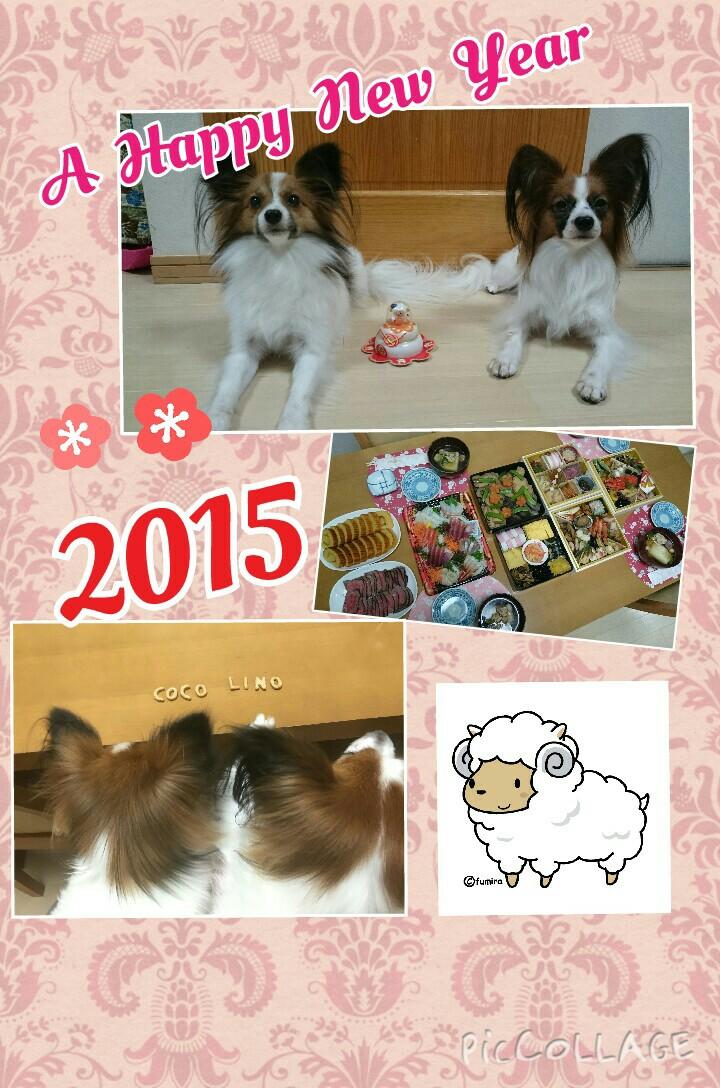 20150101120157f2e.jpg