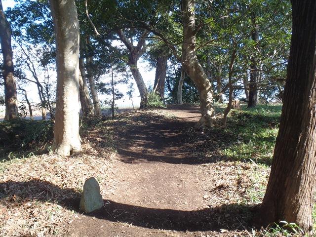 ④結びの樹の入口