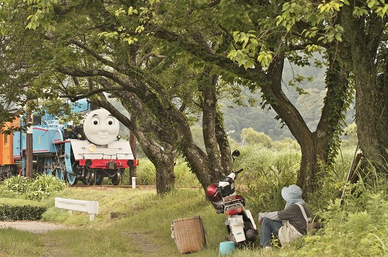木陰でトーマス
