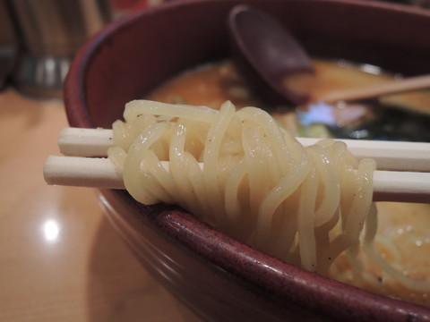 れんげラーメンの麺