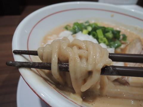 鶏濃厚ラーメンの麺