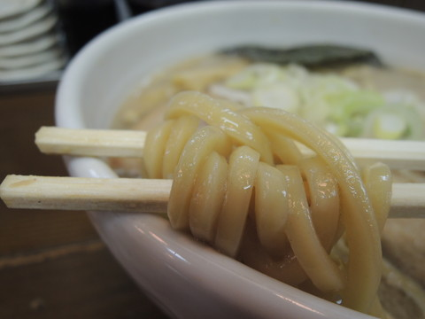 煮干し燕三条らぁめんの麺