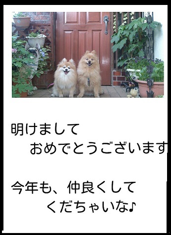 20141231_081650_2015010119292940c.jpg