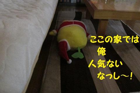 IMG_4054.jpg