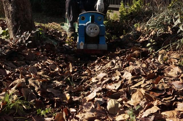 走れトーマス 落ち葉の中を走れ