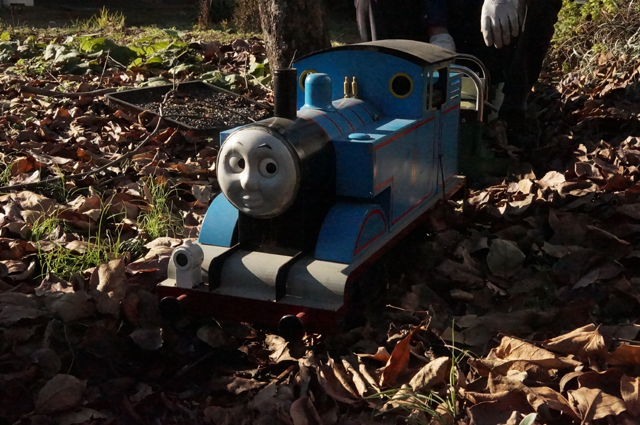 走れトーマス 落ち葉の中を飛び跳ねながら走れ