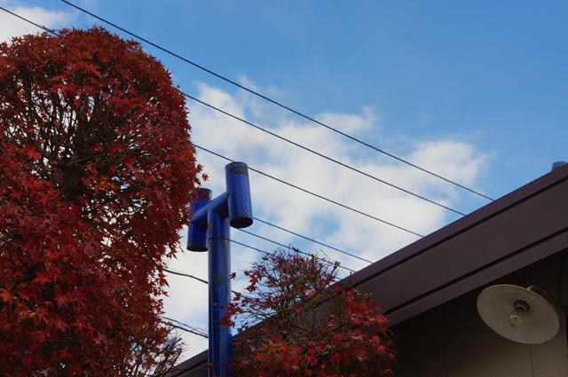 男の隠れ家の煙突と終りかけの紅葉