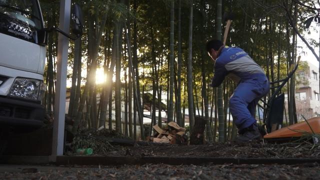 竹林で薪を割る俺