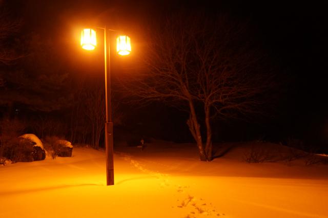 野辺山駅前の雪道を歩く