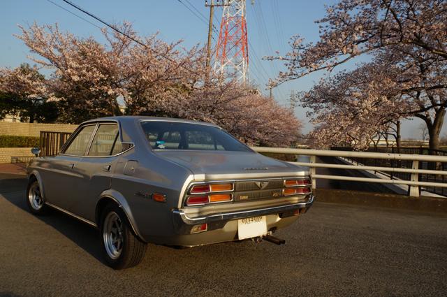 マツダルーチェと日野の桜'15