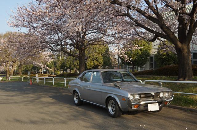 マツダルーチェと桜の花'15