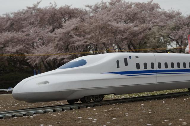 桜と5インチゲージ N700