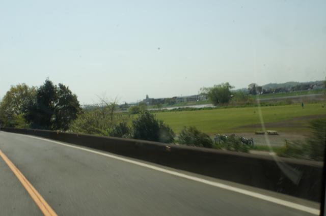 多摩川沿いも春