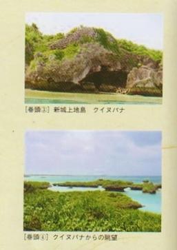 新城島 (2)