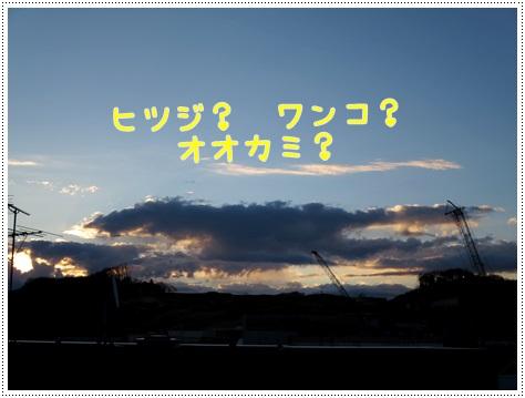 IMG_2719.jpg